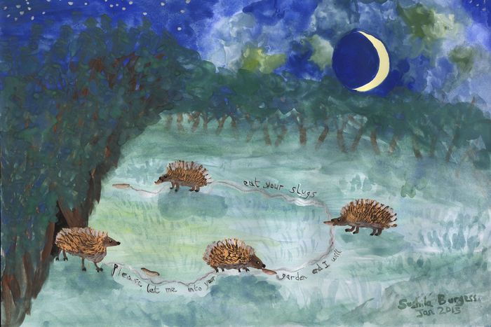 Hedgehogs Eating Slugs painting