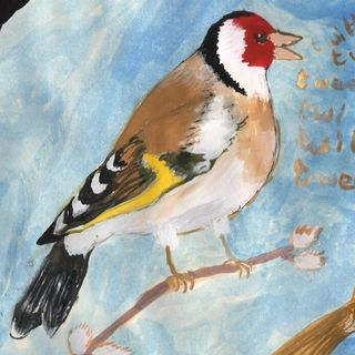 picture of a goldfinch